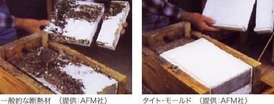 mold_f01